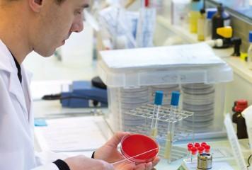 Labocea : naissance d'un grand laboratoire public