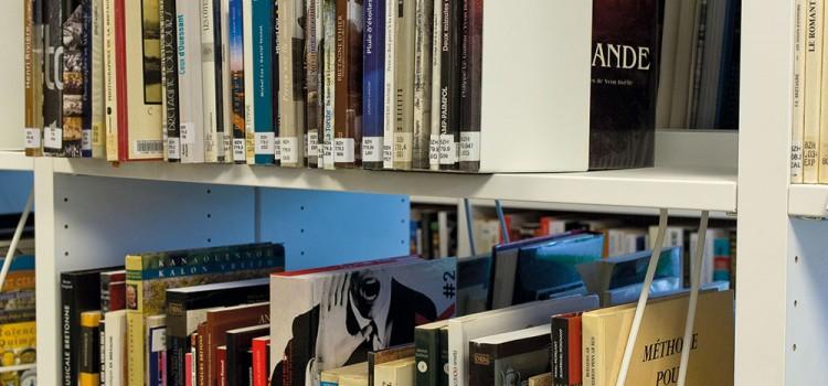 Bibliothèque de Saint Divy
