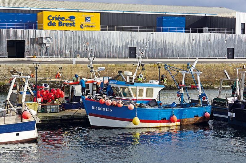 Actuellement 120 pêcheurs et 60 acheteurs utilisent l'outil