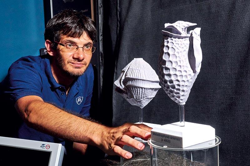 Micro-algues en 3D